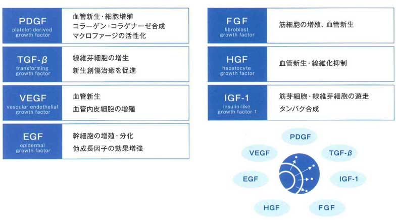 PFC-無細胞化し成長因子だけを抽出